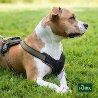 Hunter® Nylon Geschirr Neopren Hundegeschirr oliv/schwarz
