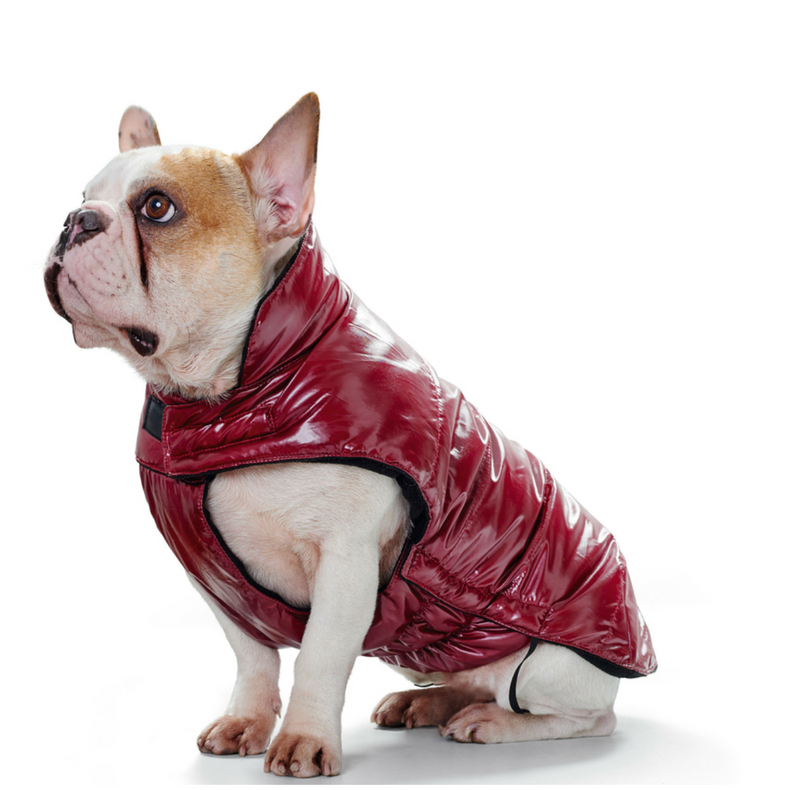 Hunter®  Winterjacke Hundemantel Tampere Regenmantel rot
