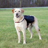 Rucksack - Hunderucksack Runner