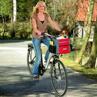 DOGGY TRAVEL JUNIOR, Grau/Rot-Orange - Hundetransportkorb