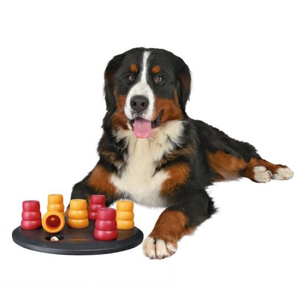 Dog Activity Solitär - Das Hunde Einsteiger Spiel - Hundespielzeug