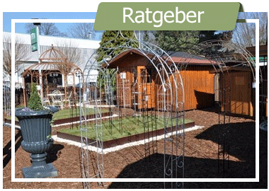 Rosenbogen-Qualitäts-Merkmale