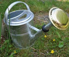 Giesskanne Metall Verzinkt 9 Liter