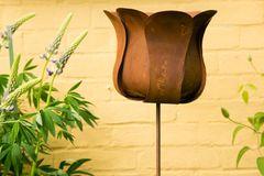 Gartenstecker Rankstab Tulpe, Rost