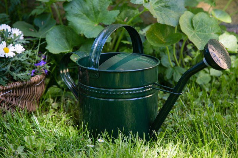 Giesskanne Grün + Zink Metall Flexo - 3,5 Liter