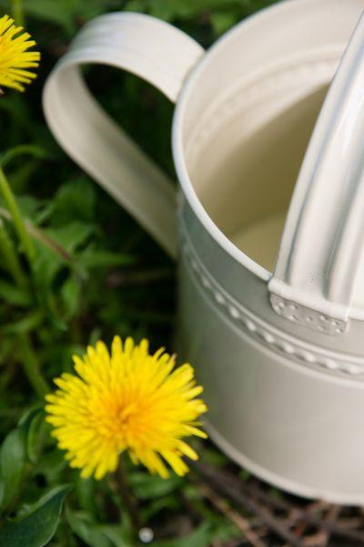 Giesskanne Creme + Zink Metall Flexo - 3,5 Liter