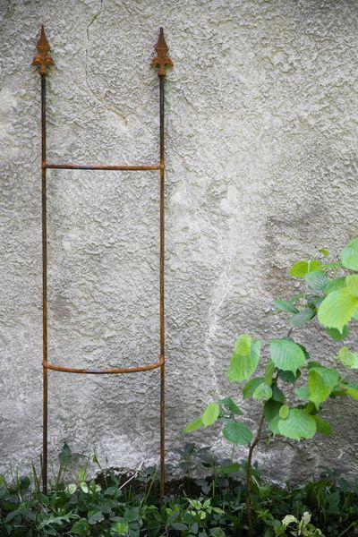 Rankgitter Rost, 150cm Höhe, aus Metall, zum Stecken in den Boden, Rankhilfe im Garten