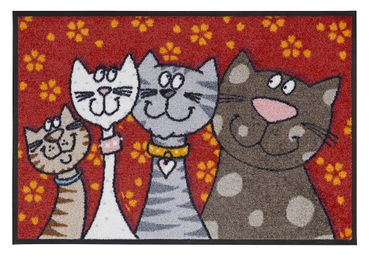 Katzenfamilie 50 x 75 cm Waschbare Fußmatte Salonloewe