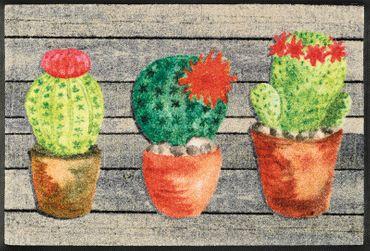 wash+dry Fußmatte Jardin de Cactus 50 x 75 cm waschbare Fußmatte