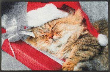 wash+dry Fußmatte Sleeping Kitty 50 x 75 cm Schmutzmatte Katzenmotiv – Bild 1