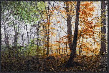 Salonloewe Fußmatte Jahreszeiten 50 x 75 cm waschbare Schmutzmatte
