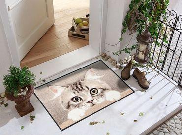 Salonloewe Fußmatte Nosy Cat 50 x 75 cm waschbare Schmutzmatte Tiermotiv – Bild 2