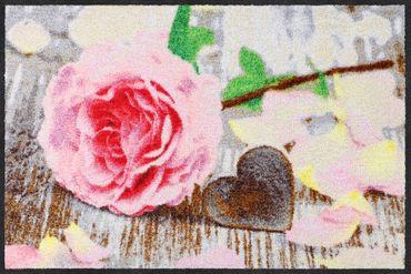Salonloewe Fußmatte Rosenblättchen 50 x 75 cm waschbare Schmutzmatte Floral – Bild 1