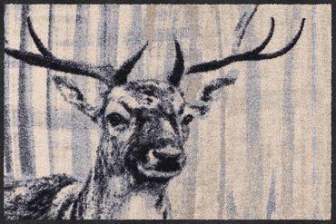 Salonloewe Fußmatte Natural Deer nature chic waschbar Schmutzmatte Landhaus – Bild 1