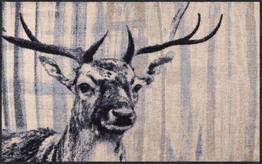 Salonloewe Fußmatte Natural Deer nature chic waschbar Schmutzmatte Landhaus – Bild 2