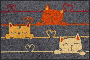 Salonloewe Fußmatte Cat Lines 50 x 75 cm waschbar Schmutzmatte