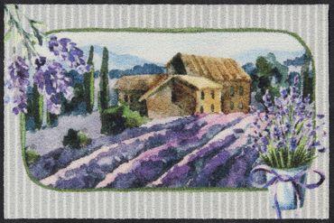 Salonloewe Fußmatte Lavender Fields 50 x 75 cm waschbar Schmutzmatte – Bild 1