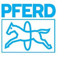 PFERD Diamantnadelfeile flachstumpf FEPA-Norm D181 Belag-L.70mm – Bild 3