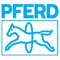 PFERD Diamantnadelfeile 3KT FEPA-Norm D181 Belag-L.70mm – Bild 3
