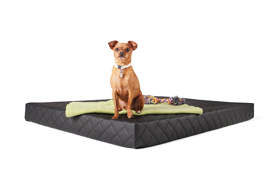 Matratzenauflage für Hundeliege