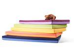 Schlafmatte für Hunde AARON 001