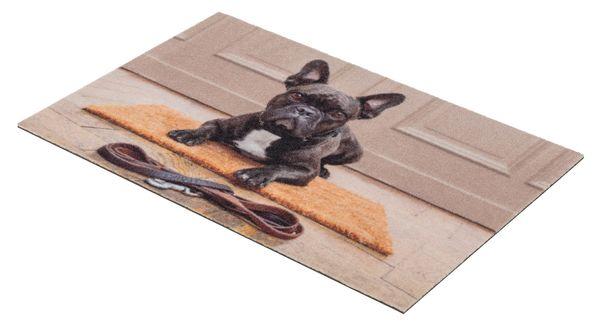 Deco Print Bulldogge 60x40 cm Sauberlaufmatte - Fussmatte - Eingangsmatte - Türmatte - Schmutzfangmatte – Bild 2
