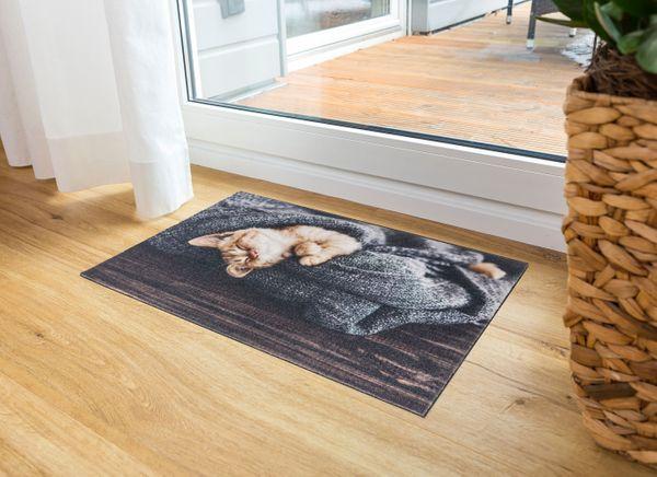Deco Print Katze Decke 60x40 cm Sauberlaufmatte - Fussmatte - Eingangsmatte - Türmatte - Schmutzfangmatte – Bild 3