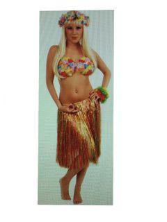 Bastrock Hawai