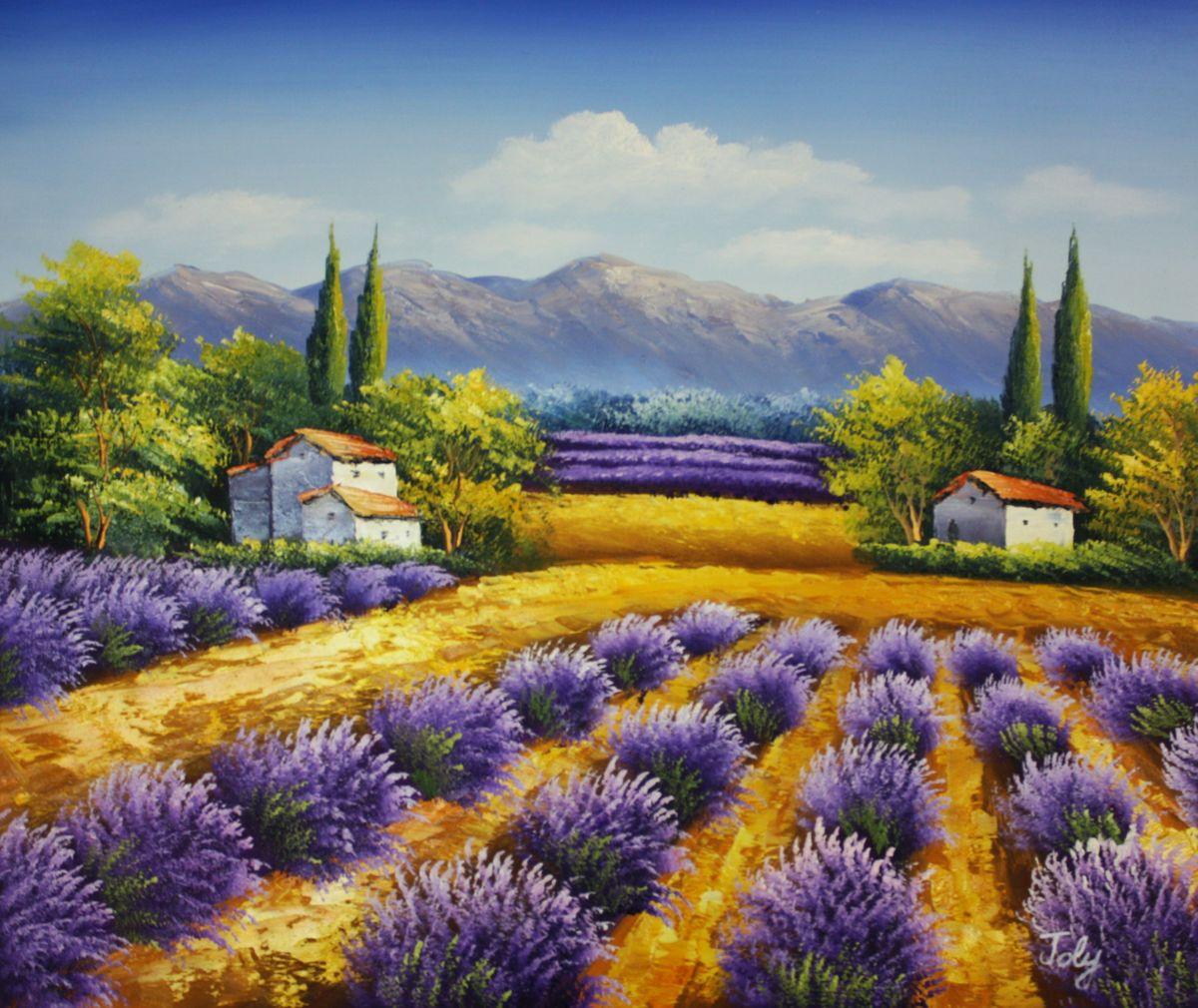 Lavendelfeld in der Toskana c96530 50x60cm fantastisches Ölbild handgemalt