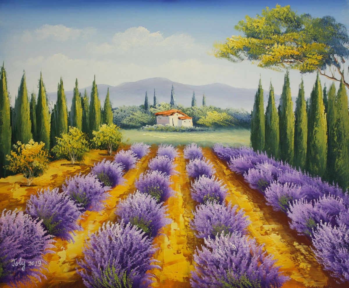 Lavendelfeld in der Toskana c97660 50x60cm fantastisches Ölbild handgemalt