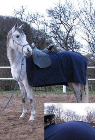AKTION Fleece Ausreitdecke, Nierendecke blau Größe 135 und 145