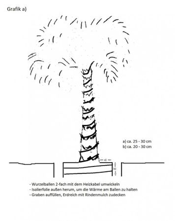 8m Pflanzenbeheizung selbstregulierend max Leistung 17W/m – Bild 4