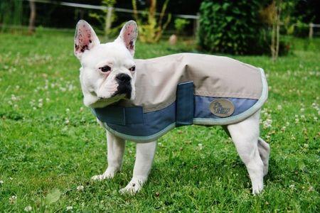 AKTION Hundemantel Mantel für Hunde Hundedecke für nass-kaltes Wetter – Bild 2