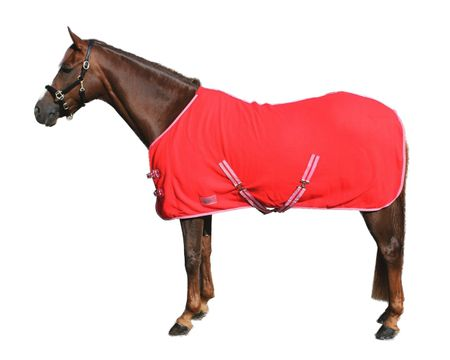 Basic Pferde Abschwitzdecke mit Kreuzbegurtung Fleece schöne Qualität – Bild 12