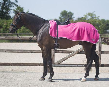 Pferd Zubehör Ausreitdecke aus Fleece Auswahl – Bild 3