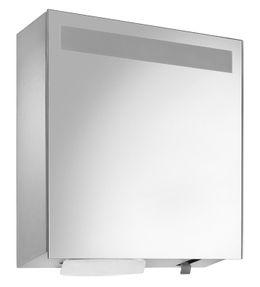 Wagner-EWAR Spiegelschrank mit integriertem Seifen- und Handtuchspender WP600  Edelstahl matt für Aufputzmontage – Bild 1