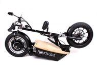 "DIE REVOLUZZI-20 - 14"" E-Scooter 20 km/h Vorführmodell Bild 3"