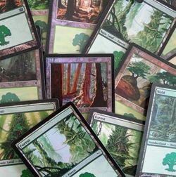 1x FOIL FOREST / WALD ! Magic the Gathering Basic Land