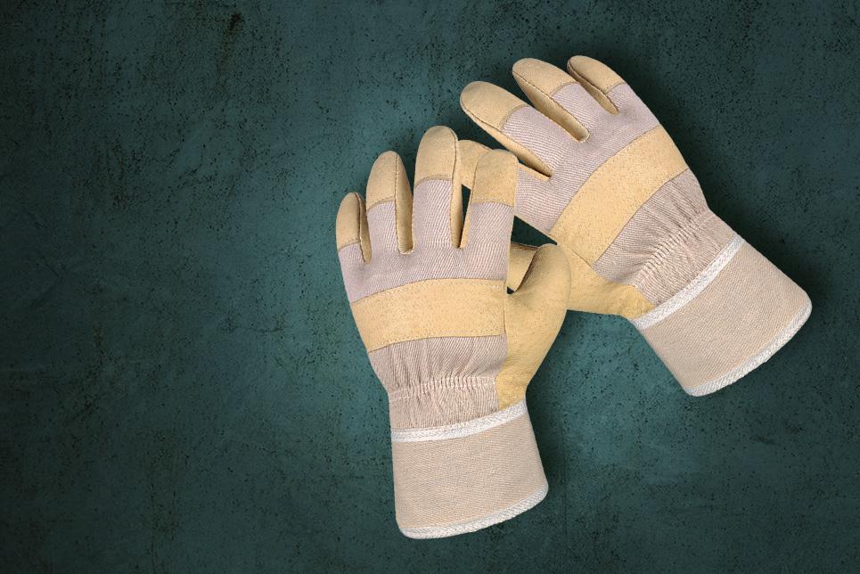 Schweinsvollleder-Handschuhe