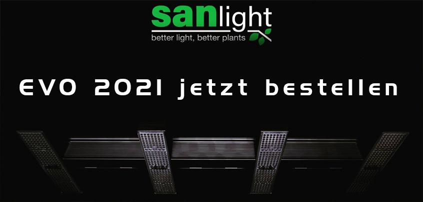 SANlight LED