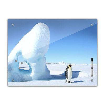 Memoboard - Tiere - Pinguin im Eis  – Bild 2