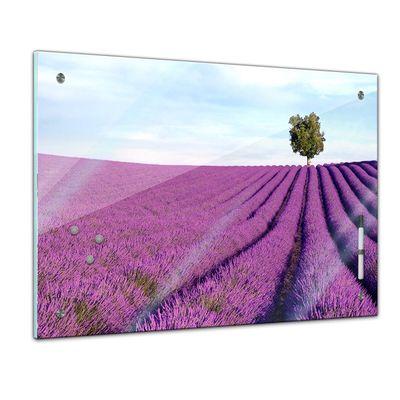 Memoboard - Landschaft - Lavendelfeld Provence – Bild 1
