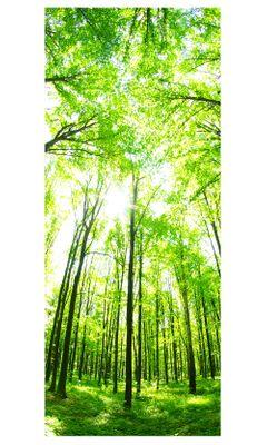 Türaufkleber - Grüner Wald – Bild 3