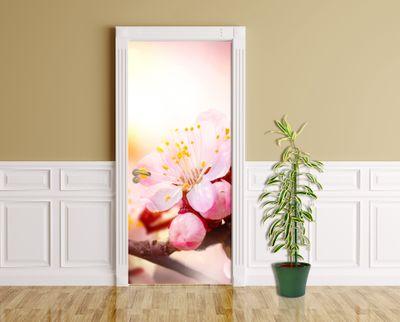 Türaufkleber - Aprikosenblüten - Aprikose – Bild 2