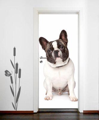 Türaufkleber - Französische Bulldogge – Bild 1