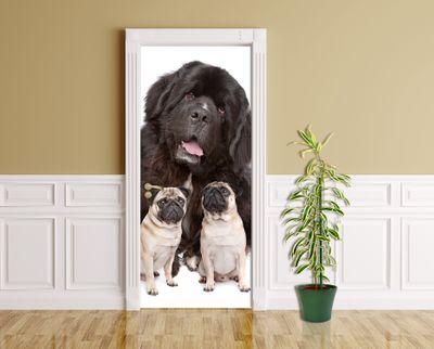 Türaufkleber - Großer und kleine Hunde – Bild 2