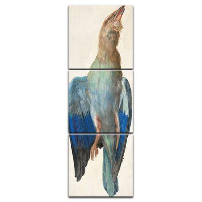 Kunstdruck - Alte Meister - Albrecht Dürer - Aquarell - Blaue Krähe – Bild 3
