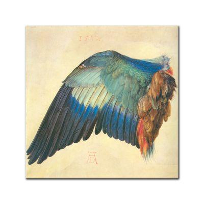 Albrecht Dürer - Flügel einer Blaurake – Bild 2