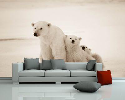 SALE Fototapete Eisbären Familie - 420 cm x 270 cm - sephia