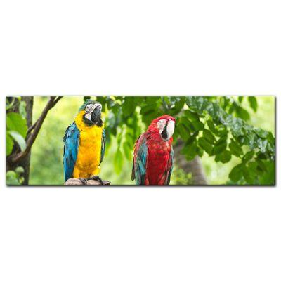 SALE Leinwandbild - Macaw Papageien - 160x50 cm – Bild 2